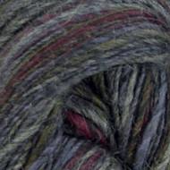 Sugar Bush Burgundy Blast Motley Yarn (3 - Light)