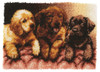 "WonderArt Lab Puppies 24"" x 34"" Latch Hook Kit"