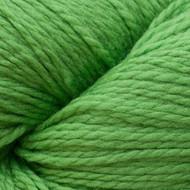 Cascade Kiwi Eco + Yarn (5 - Bulky)