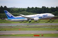Phoenix ANA Boeing 787-8 JA814A 1/400