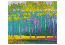 Wolf Kahn: Magenta, Green and Yellow Boxed Small Notecards