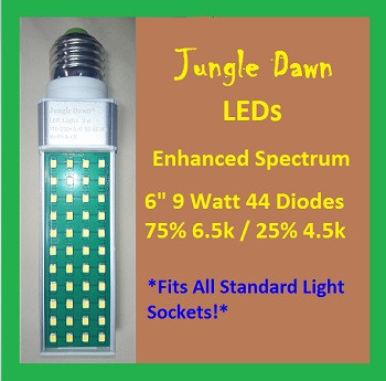 Jungle | Dawn | LED | 6 | Inch | 9 | Watt