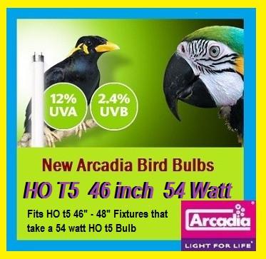 HO  T5 46 Inch 54 Watt Bird Bulb 2.4% UVB + 10% UVA