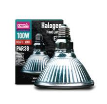 Arcadia 100w Basking Halogen