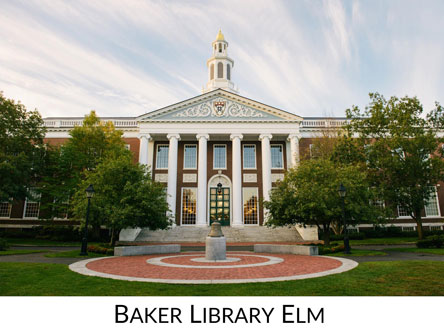 Baker Library Icon