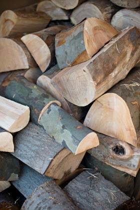 Wood Pile Harvard Wood