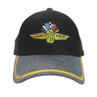 Wing Wheel and Flag Tinted Trim New Era 39THIRTY Cap