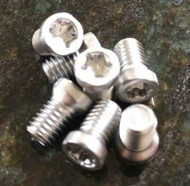 Long Stainless Steel Replacement Screws