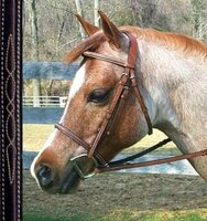 Bobby's Fancy Stitched, Raised Bridle with Plain Reins