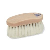 Champion Tampico Soft Finishing Brush, Plastic Back