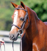 M. Toulouse Platinum Hampshire Fancy Stitched Padded Bridle