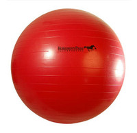 Horsemen's Pride Jolly Mega Ball, 25""