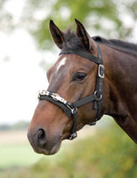 Shires Nylon Lunging Caveson, Pony & Cob