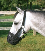 Best Friend Deluxe Grazing Muzzle & Halter