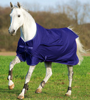 "Amigo Pony Hero 6 Medium Turnout Blanket, 45"" Only"