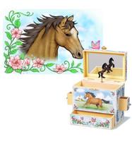 Wild and Free Musical Treasure Box