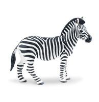 Wild Safari Plains Zebra