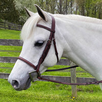 Americana Raised, Fancy Stitched Bridle With Fancy Reins, 3 Sizes