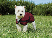 "Weatherbeeta Fleece Lined Windbreaker Dog Coat, Ruby/Black, 12"" - 28"""