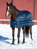 "Horseware Pony Blanket Liner, 100 gm, 45"" - 69"""