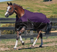 "Weatherbeeta Comfitec Plus Turnout Sheet, Purple/Black, 48"" - 69"""