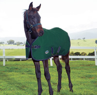 "Weatherbeeta 1200D Foal/Mini Blanket, Hunter/Navy, 36"" - 51"""