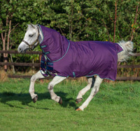 "Amigo Bravo 12 Plus Pony Turnout Sheet, 48"" Only"
