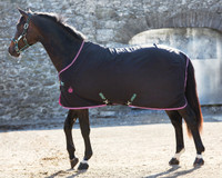 "Amigo Pony Stable Sheet, Black/Purple & Mint, 54"" - 69"""