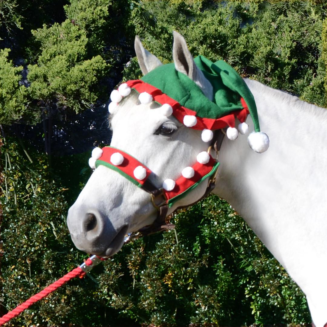 Holiday Horse Wear Two Ear Elf Hat
