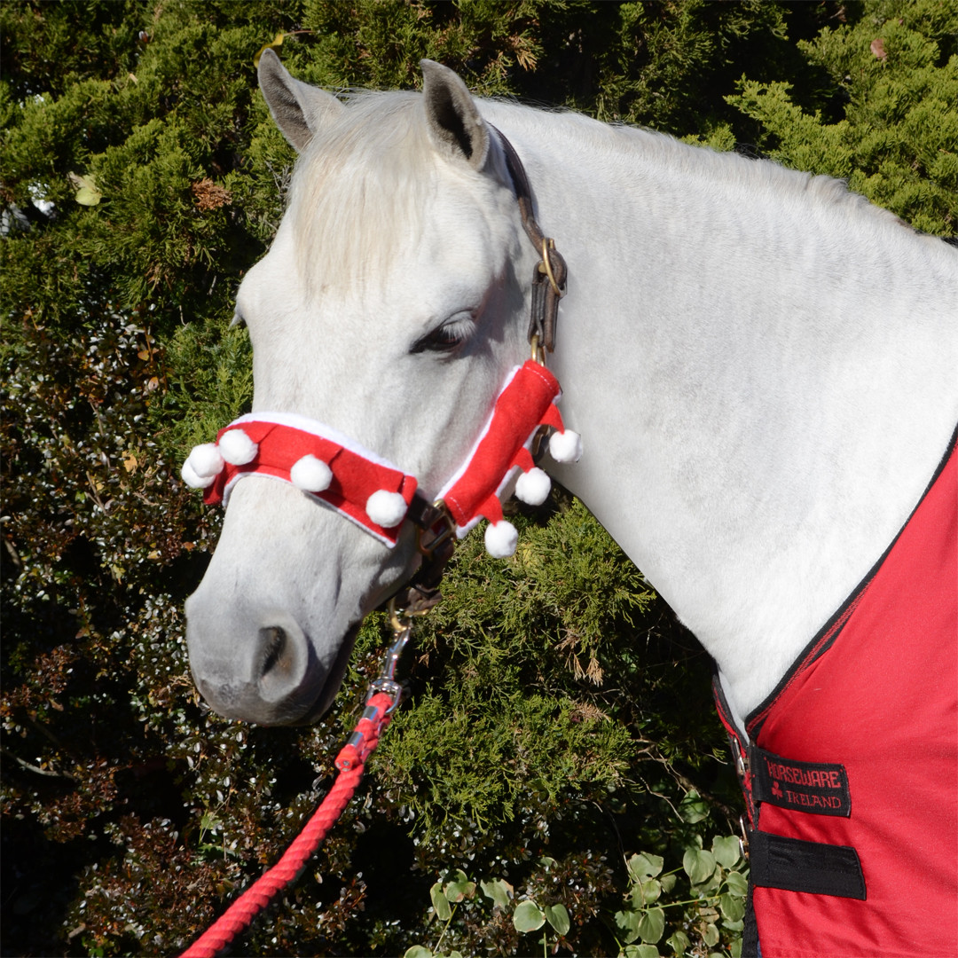 Christmas Horse Tack.Holiday Horse Wear Santa Halter Covers