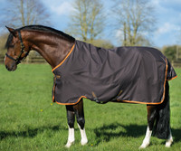 "Amigo Pony Hero 6 Turnout Sheet, Excalibur/Orange, 45"" - 69"""