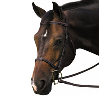HDR Pro Plain Raised Havana Bridle, Pony & Cob