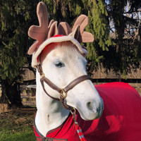 Holiday Horse Wear, Reindeer Two-Ear Hat