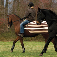 Rambo Newmarket Fleece Pony Quarter Sheet, Whitney Stripes Chocolate