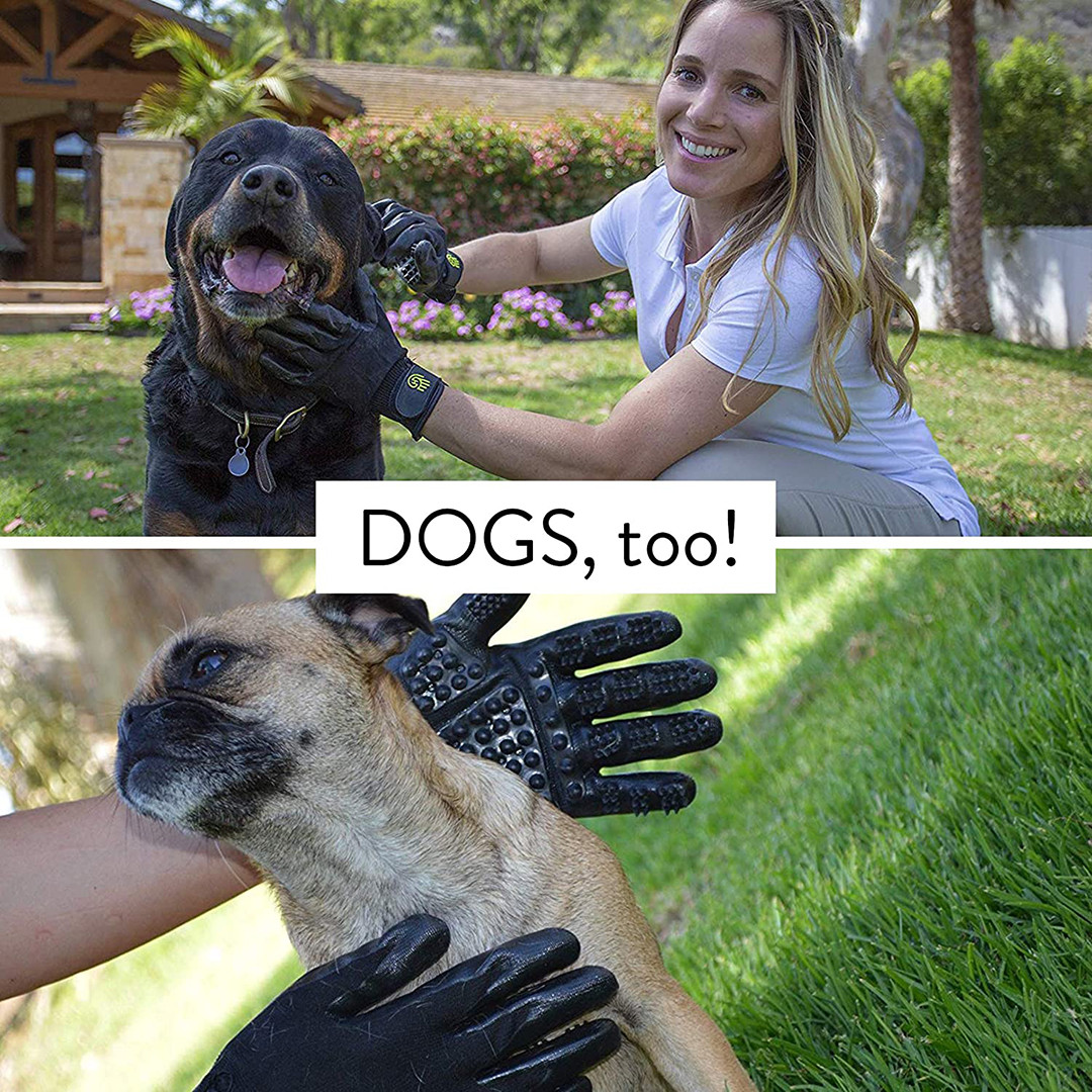 Dogs Too