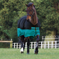 "Horseware Mio Lite Turnout Sheet, Black with Turquoise, 45"" - 69"""