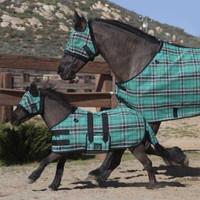Kensington Mini Protective Fly Sheet, Black Ice Plaid
