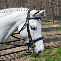 Bobby's Wide Noseband, Padded, Contour Crown, Fancy Bridle