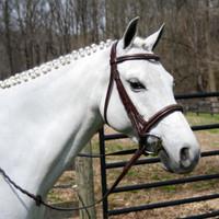 Pro Am Padded, Raised & Fancy Stitched Bridle, Pony & Cob