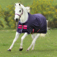 "Amigo Pony Hero 900 Medium Turnout, Grape/Pink, 45"" - 69"""