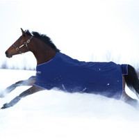 "Amigo Pony Hero 900 Medium Turnout, Atlantic Blue/Ivory, 45"" - 69"""