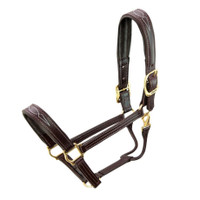 Walsh Signature Padded, Fancy Stitched Halter , Havana
