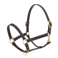 Ovation Elite Stable Halter, Dark Brown, Pony & Cob