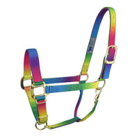 "Hamilton Quality Nylon Adjustable 3/4"" Halter, Rainbow, Small Pony"