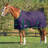 "Weatherbeeta Comfitec Essential Heavy Turnout, Purple/Green, 48"" - 69"""