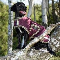 Horseware Amigo Waterproof Dog Blanket, Fig/Navy/Tan