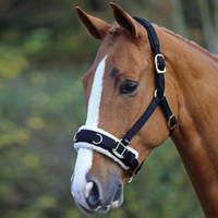 Shires Fleece Lined Nylon Lunging Caveson, Black, Pony & Cob