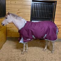 "Weatherbeeta Comfitec Premier Freedom Pony Medium Turnout, 48"" - 63"""