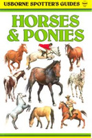 Usborne Guide to Horses & Ponies
