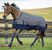 Weatherbeeta Saxon 600D Medium Turnout, 48'' - 69''